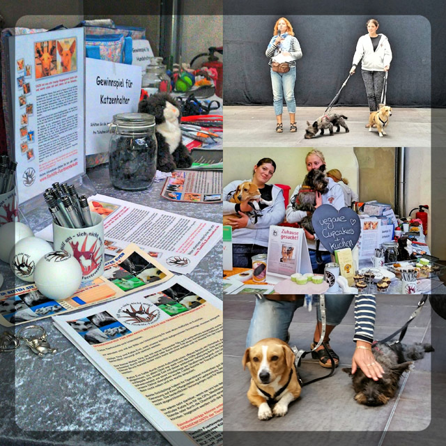 Collage Infostand Hattingen